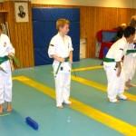 gradering barn green 11
