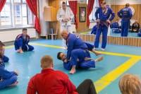 BJJ Norrköping, seminarium, träning,kampart, grappling
