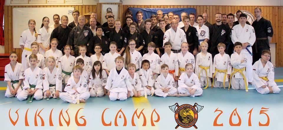 viking camp-15 gruppbild